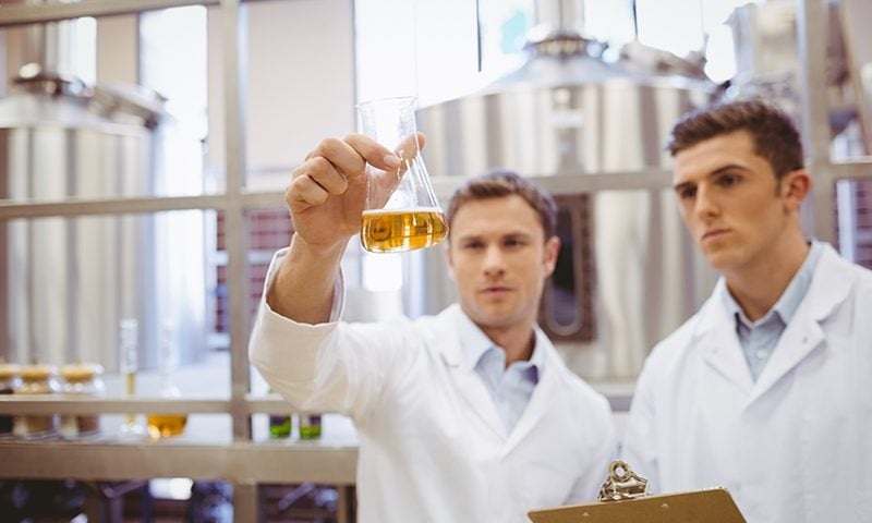 The fermentation process in beer is producing a sustainable fuel