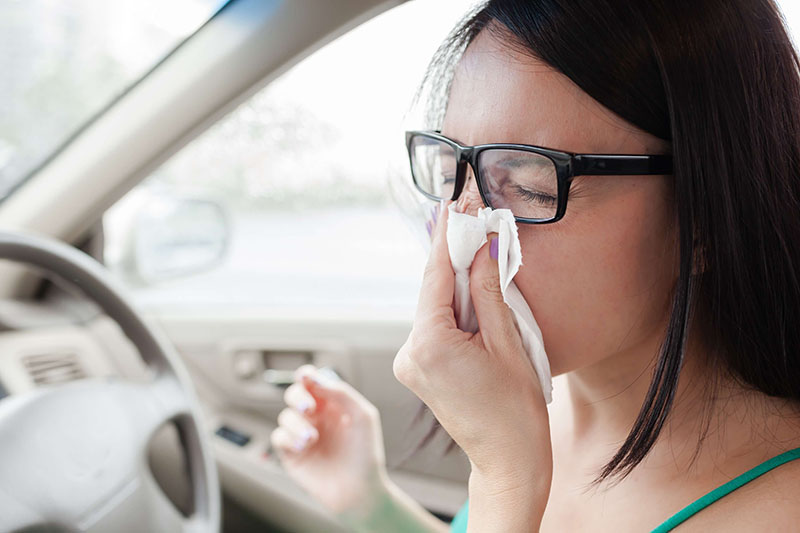 Top tips for driving with hay fever